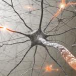 Artemisia_Neurologia_Psichiatria