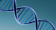 Servizio di Genetica Medica